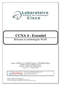 CCNA Module 4